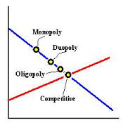 Duopoly Market