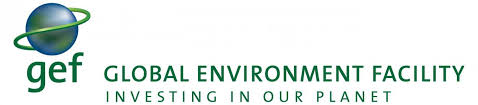 Discuss on Global Environment
