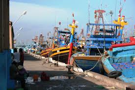 Export Sector