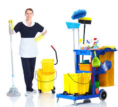 Janitorial Cleaning Business