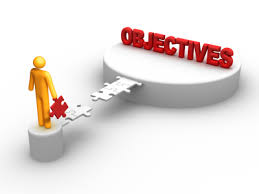 Marketing Objectives and Strategies for New Product