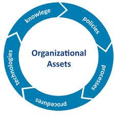 Organizational Policies