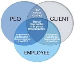 Guideline for Professional Employer Organization