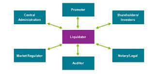 Voluntary Liquidation Definition