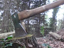 Woodchoppers