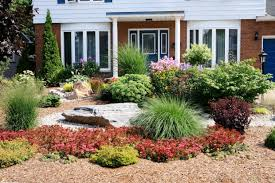 Cash Saving Landscaping Ideas