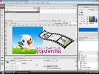 About Flash Animation
