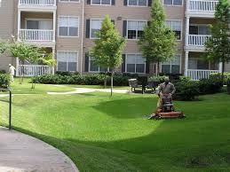 Landscaping Services Can Improve Commercial Environment