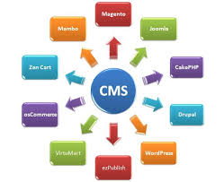 Content Management Software Systems