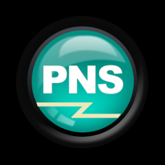 Professional Network Service