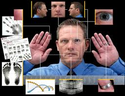 Biometric Identification