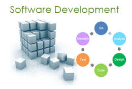 Software Development for Project Management