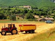 Productivity with Agricultural Tractors