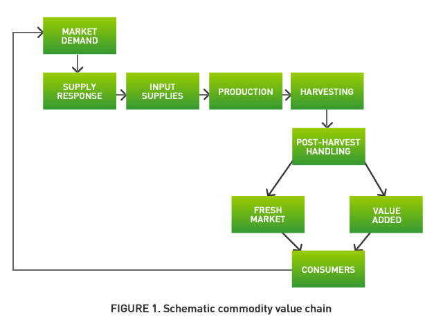 Agricultural Value Chain Assignment Point