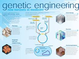 Genetic Engineering Process