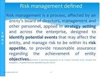 Define Risk Management Consultants