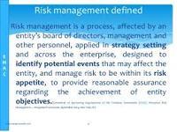 Define Risk Management Consultants