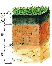 Soil Science Resource