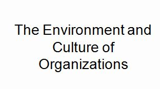 The Environment and Culture of Organizations