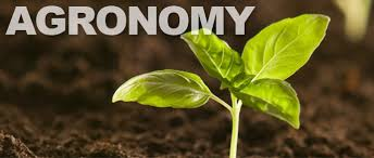 Agronomy Definition