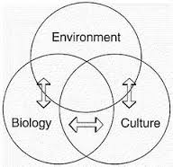 Biocultural Anthropology