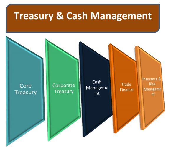 cash manage