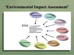 Environmental Impact Assessment - Assignment Point