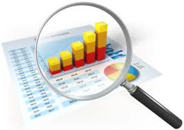 Comprehensive Financial Analysis of Thats It Sportswear Limited