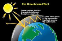 Facts of Greenhouse Installation