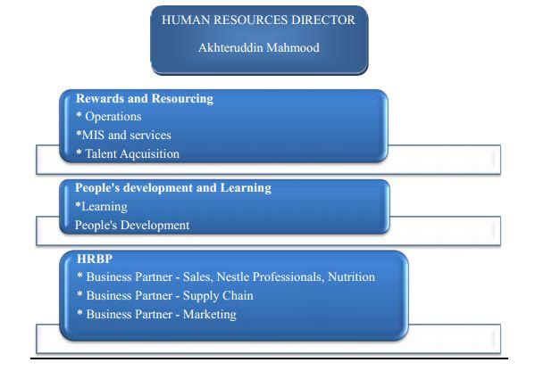 nestle human resources development program