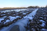 Need for Land Drainage