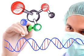 rabies virus research paper Essay rabies rabies is an infectious disease of animals which is a member of a group of viruses constituting the family rhabdoviridae the virus particle is.