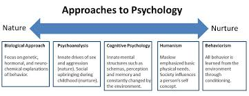 sociology assignment personality development Plo#5 aligns with ilo #5 (personal development) demonstrate the ability to   plo#3 sociology courses present assignments which require students to select.