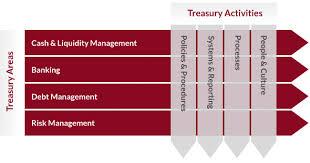 Treasury Functions Analysis of Financial Performance of Banglalink