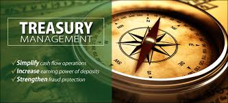 Treasury Management In Berger Paints Assignment Point