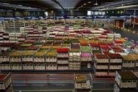 Varieties of Warehouse