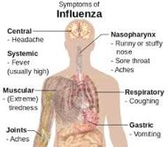 About Influenza