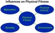 Importance of Physical Fitness