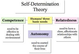 organizational theory term paper