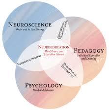 Educational Neuroscience