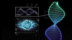 Medical Image Computing