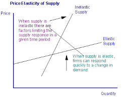 research report the price elasticity of Managerial economics research report: the price elasticity of demand the price elasticity of demand: 1 introduction: price elasticity of demand is an economic measure that is used to.
