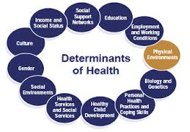 Social Determinants of Health Economic