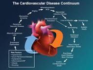 About Cardiovascular Disease