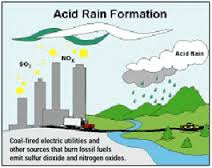 acid paper rain term Free term paper on acid rain available totally free at planet paperscom, the largest free term paper community.