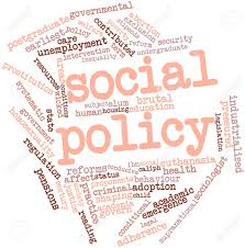 Social Policy Assignment Point