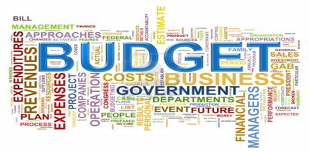 Budget Definition