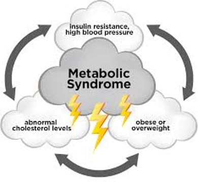 About Metabolic Syndrome