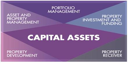 Capital Asset