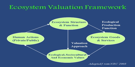Ecosystem Valuation